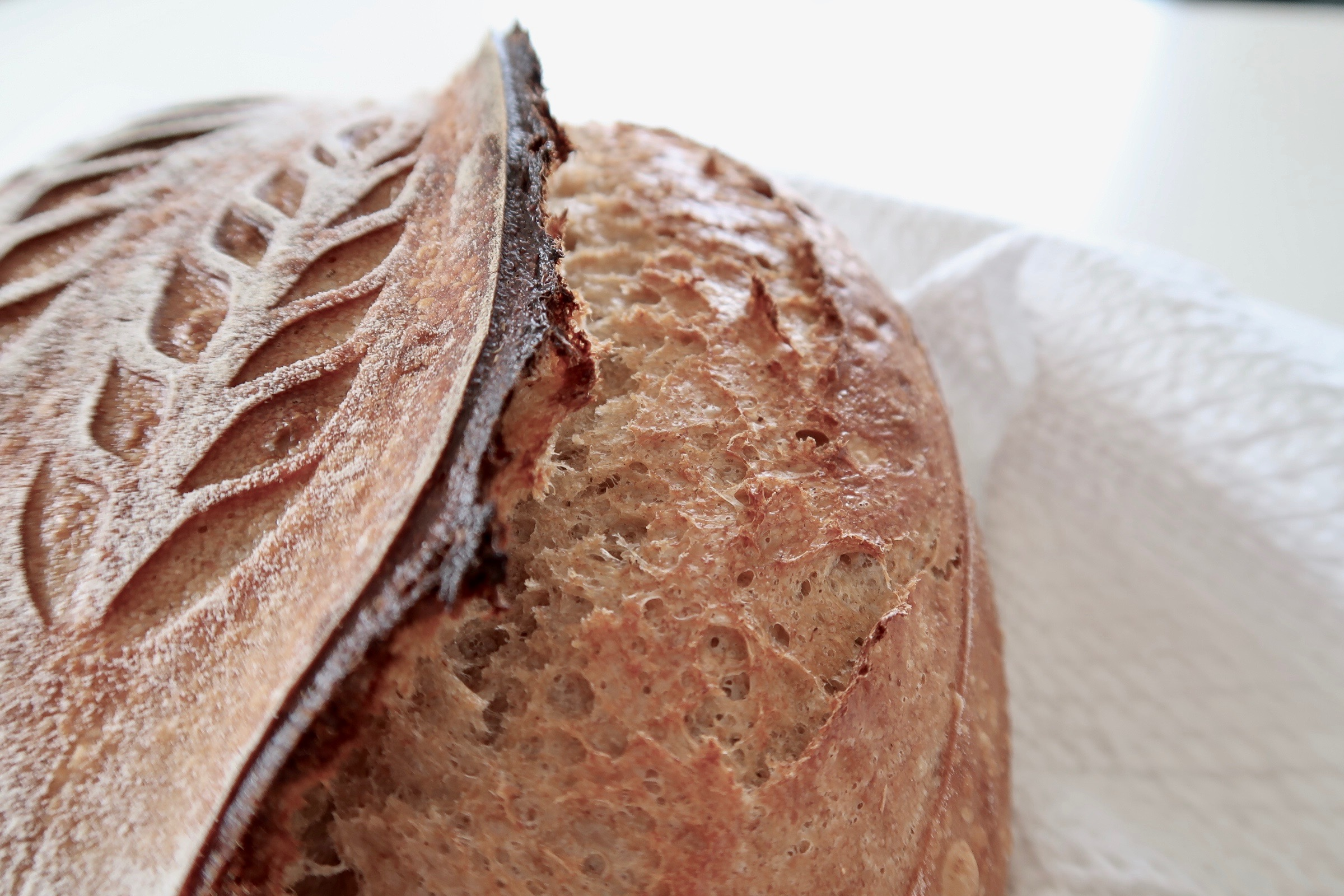 Read more about the article Hverdagsbrød